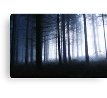 Forest of Dean  Canvas Print