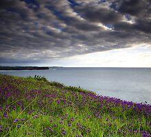 Between Heaven and Earth by Tatiana R