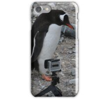 Gentoo Penguin in Antarctica & Go Pro  - 2 iPhone Case/Skin