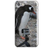 Gentoo Penguin in Antarctica & Go Pro  - 2 iPhone Case/Skin