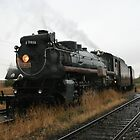 Canadian Pacific 2816 Empress Steam Engine by David M. Bull