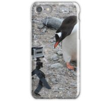Gentoo Penguin in Antarctica & Go Pro - 3 iPhone Case/Skin