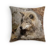 Timberwolf Throw Pillow