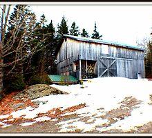 Barn on the Hill by conniehartel