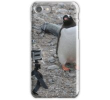Gentoo Penguin in Antarctica & Go Pro - 4  iPhone Case/Skin