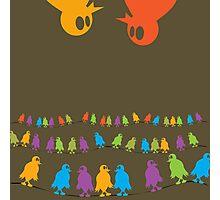 Birds, chatting and chatting and chatting and chatting and chatting and chatting Photographic Print
