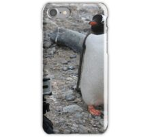 Gentoo Penguin in Antarctica & Go Pro - 5 iPhone Case/Skin