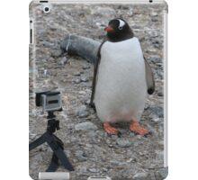 Gentoo Penguin in Antarctica & Go Pro - 5 iPad Case/Skin