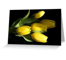 Five Tulips Greeting Card