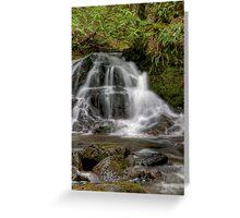Christie Falls - Lower Basin Greeting Card