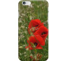 Poppies and grass in the wind iPhone Case/Skin