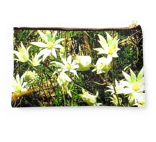 Flannel Flowers, Blue Mountains, New South Wales Studio Pouch