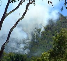 Bushfire On The Hill by PhoenixArt