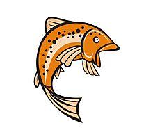 Trout Rainbow Fish Jumping Up Cartoon Photographic Print