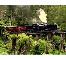 Narrow Gauge Garratt Steam Locomotive Photographic Print