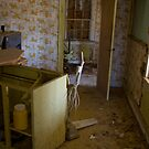 Tacky wall paper and old appliances by DariaGrippo