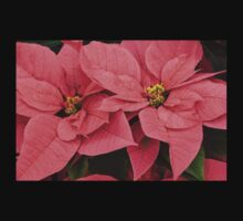 Christmas Greetings with a Vivacious Pink Poinsettia Kids Clothes