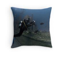 Underwater photographer takes photos of dusky groupers Throw Pillow