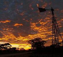 Sunrise over the mallee by jembot