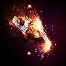 Fire boarder by EskimoGraphics