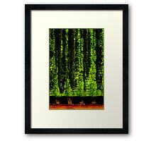 Screen Trees Framed Print