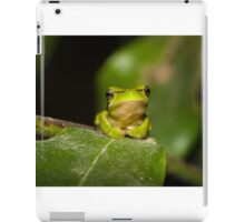 Eastern Dwarf Tree Frog iPad Case/Skin