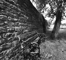 the bench by davidautef