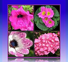 Pinkies Collage -  Pink Summer Flowers by BlueMoonRose