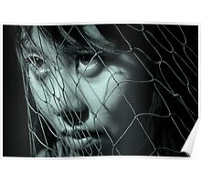 Netted Poster