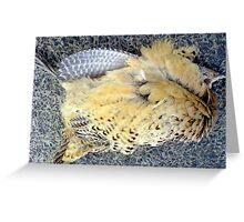 Death of a pleasant pheasant... Greeting Card
