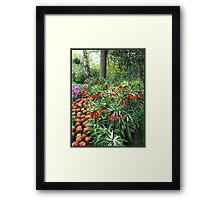 Tulips and Crown Imperials, Keukenhof Gardens, Holland Framed Print