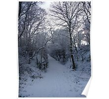 Wintry path - Ystrad Meurig Poster