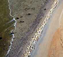 Creeping Tide by Mark Hamilton