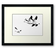 How It Feels To Be Free Framed Print