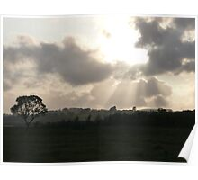 Early evening rays Poster