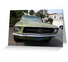Mustang walk by Greeting Card
