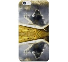 Double Reflection iPhone Case/Skin