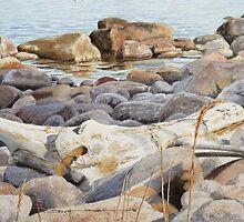 Shoreline Shadows by Douglas Hunt