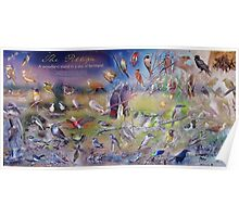 Salt Caves Bird Information Sign Poster