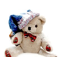 Erasmus Teddy Bear in snow by pogomcl