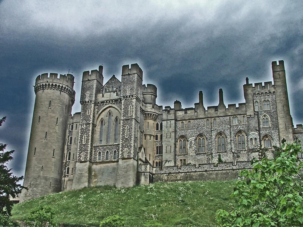 Arundel Castle by Dave Godden