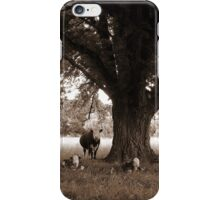 A Good Season, Uralla, Northern Tablelands, NSW, Australia iPhone Case/Skin