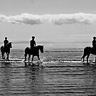 racehorses by footsiephoto