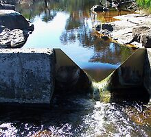 Old Wier at Waychinicup by Julia Harwood