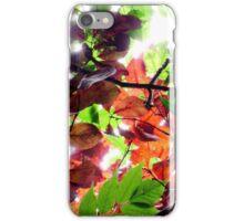 Enchanted iPhone Case/Skin