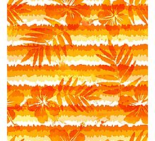 Orange bright flowers and grunge stripes Photographic Print