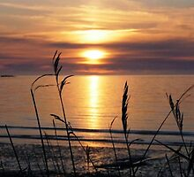 The Irish Sea from Nefyn by EDaf