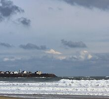 Coastal Living by Arline Grant