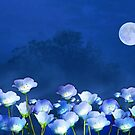 Cornflowers in the moonlight'... by Valerie Anne Kelly
