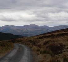 Galtee Mountains,from,Forest,above Clogheen,Co.Tipperary. by Pat Duggan